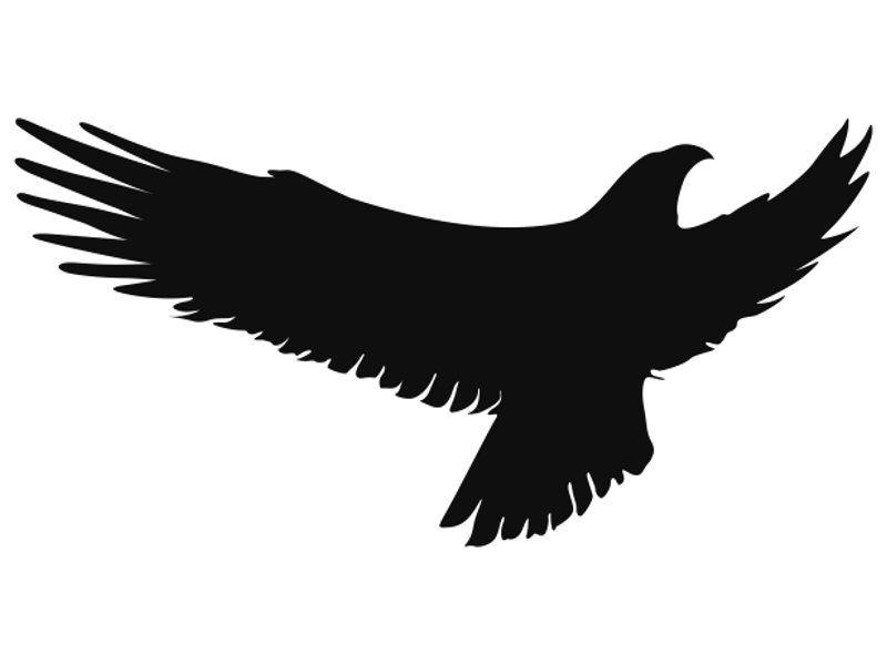 Купить Наклейка-стикер силуэт хищной птицы Вариант 3 ...